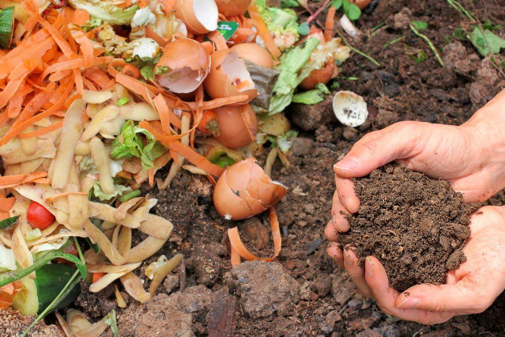 Cascara-huevo-compost