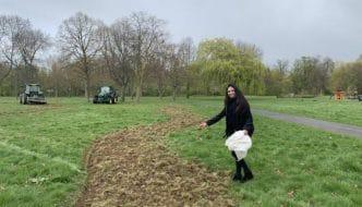 Un barrio londinense hará un corredor de flores de 11 km para ayudar a las abejas