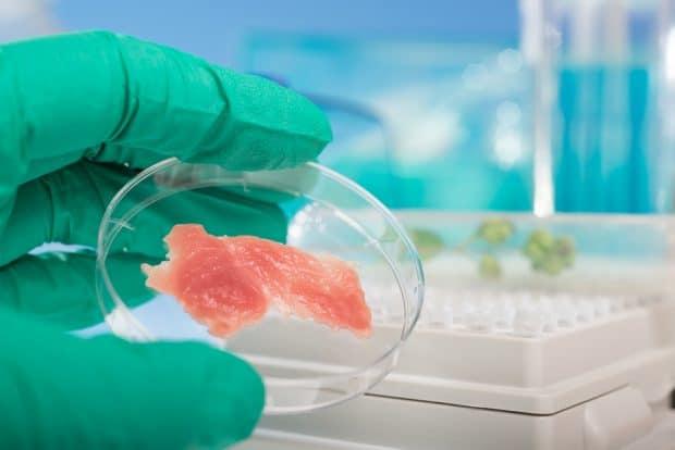 Carne cultivada en laboratorio