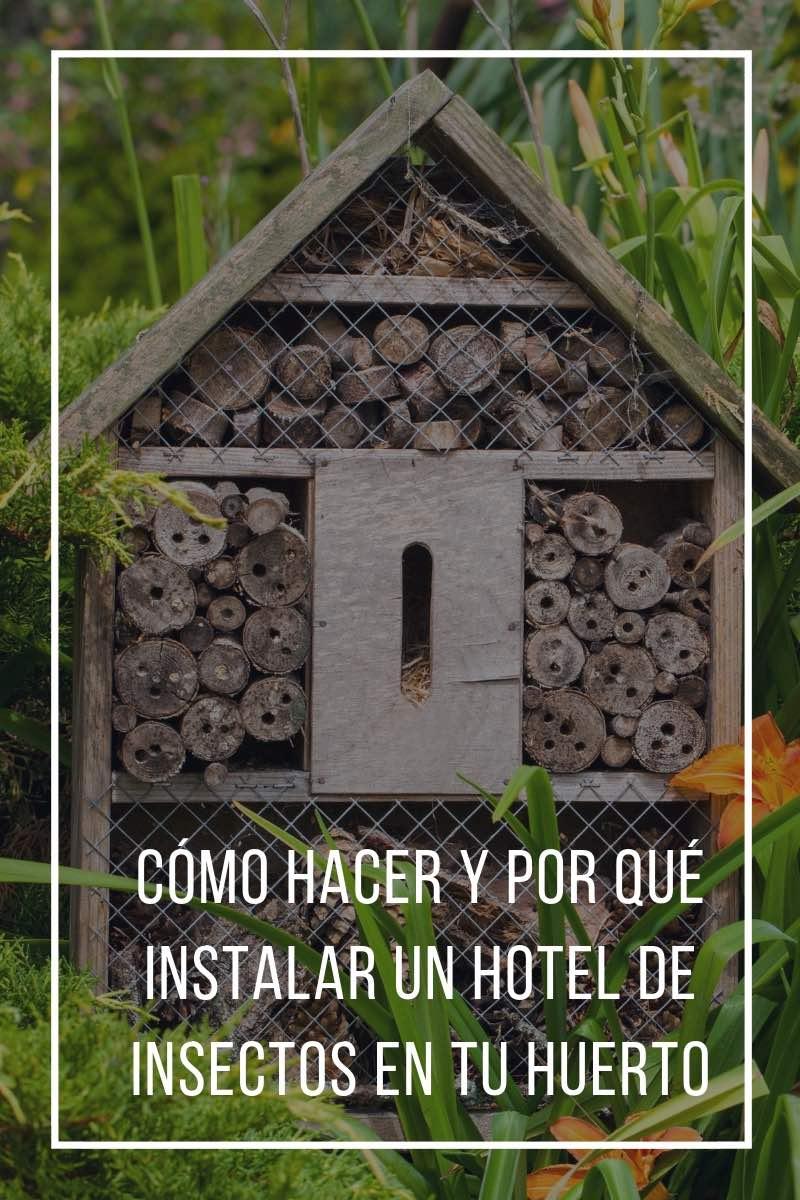Cómo hacer y por qué instalar un hotel de insectos en tu huerto