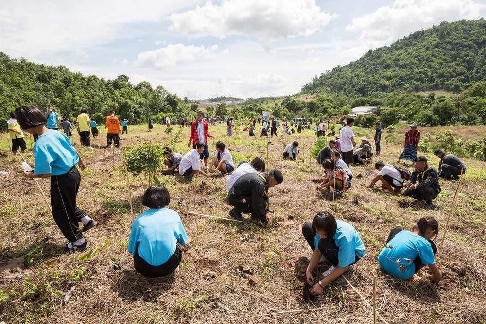 Estudiantes-reforestando