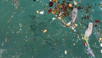 La contaminación en el Mar Mediterráneo se ha triplicado en los últimos 25 años