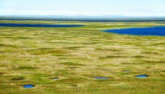 El permafrost ártico se derrite 70 años antes de lo previsto 😥