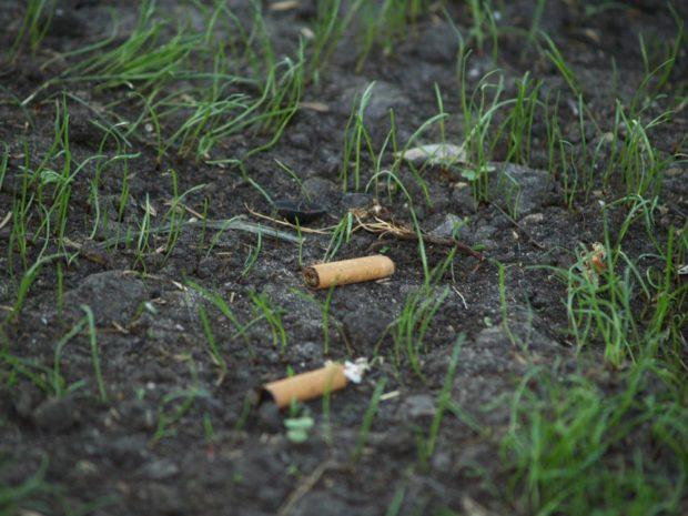 Las colillas de cigarrillos, enemigas de nuestras plantas