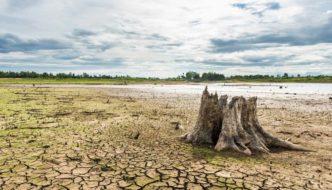 Los ríos se secan y algunos países ya preparan planes para reducir el consumo de agua