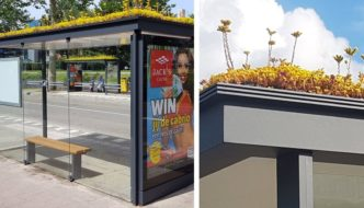 Holanda cubre de techos verdes paradas de autobús para ayudar a las abejas