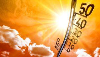 Confirmado: Julio 2019 ha sido el mes más caluroso jamás registrado en la Tierra