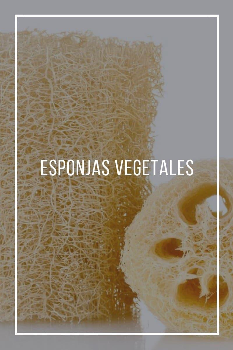 Esponjas vegetales