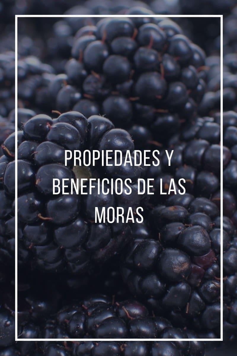 Propiedades y beneficios de las moras: valores nutricionales de una fruta rica en antioxidantes