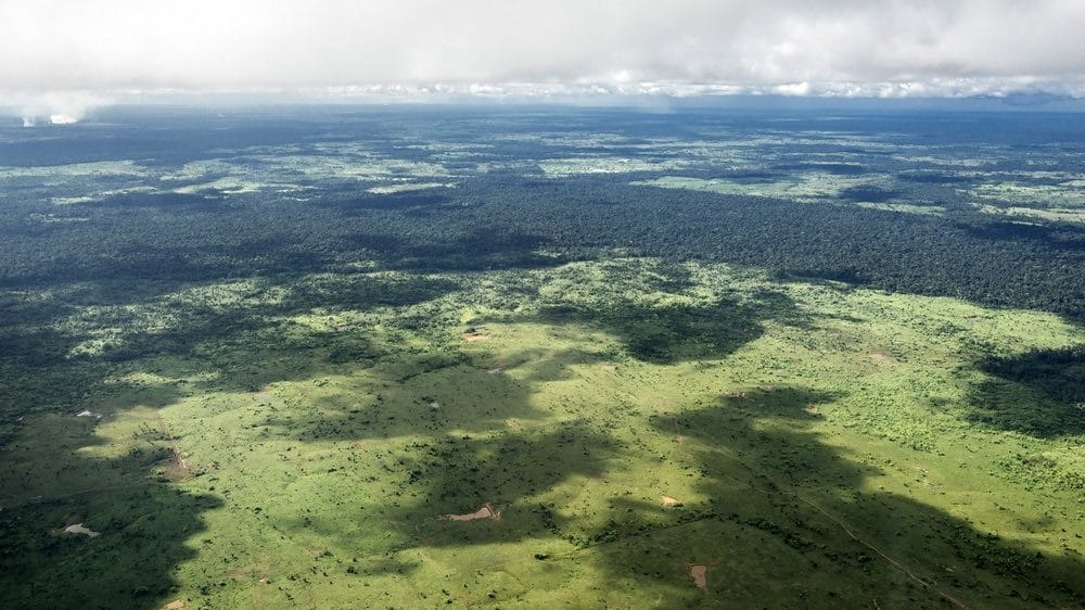 Cropped-amazon-deforestation