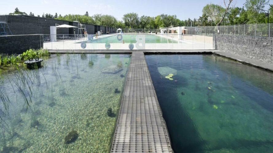 Cropped-piscina-natural-del-parque-borden