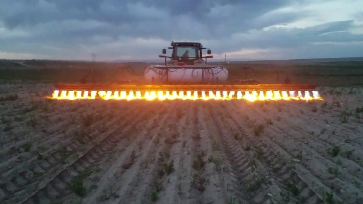 Tractores-lanzallamas