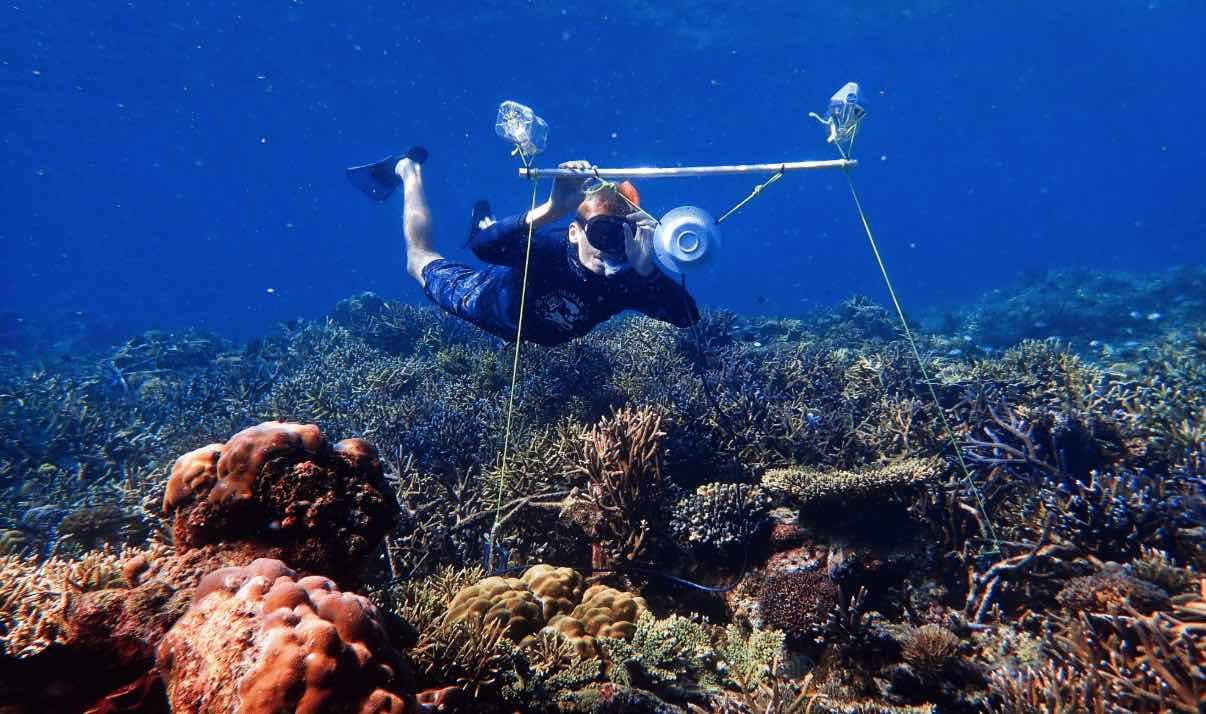 Altavoces-corales