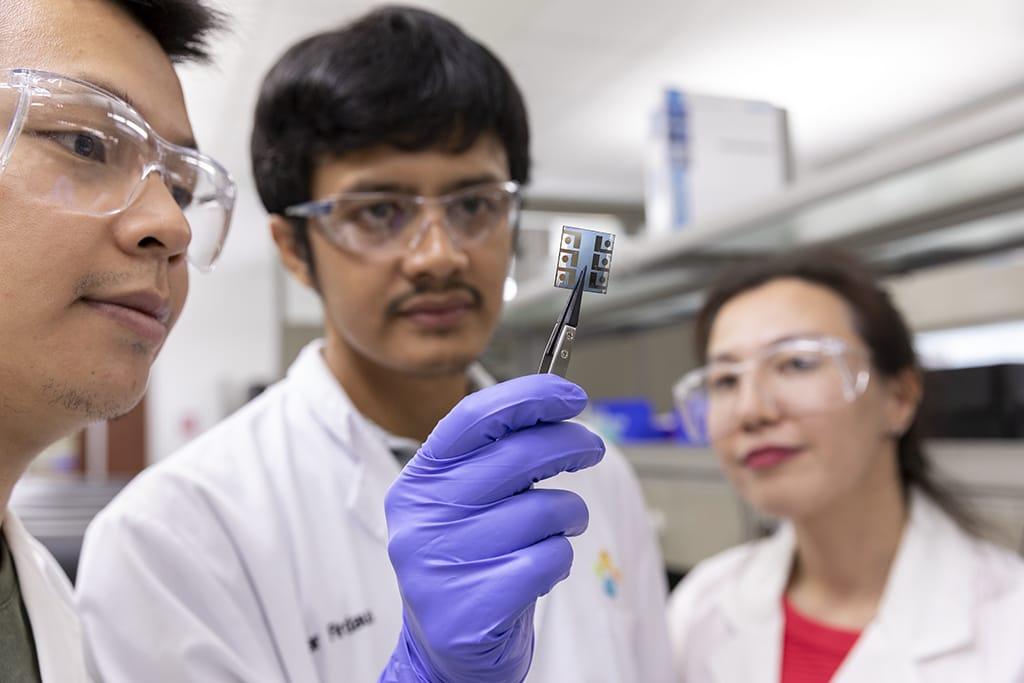 Celulas-solares-organicas-kaust