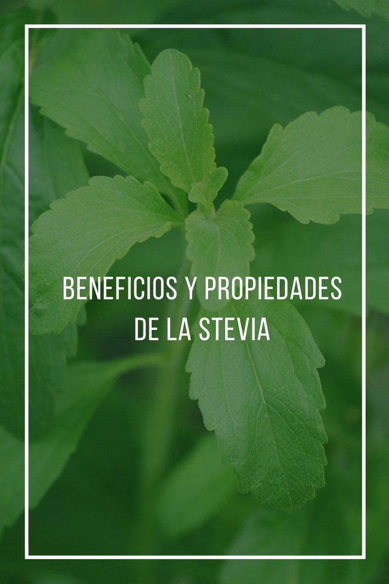 Beneficios y propiedades de la stevia