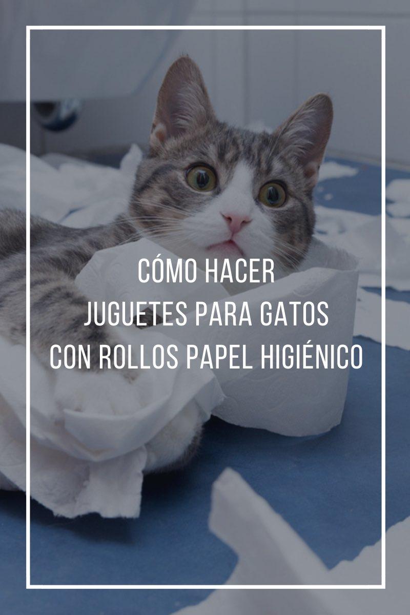 Cómo hacer juguetes para gatos con rollos de papel higiénico