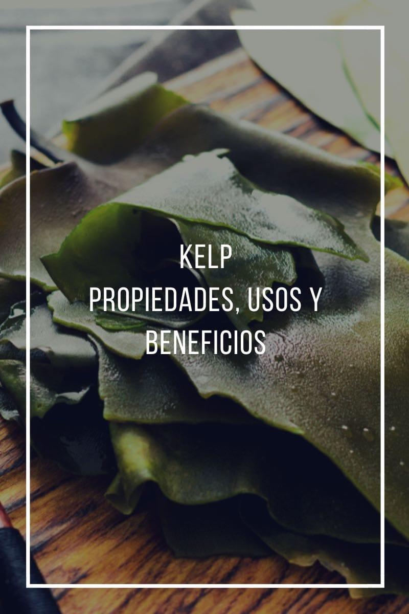 Kelp, propiedades, usos y beneficios