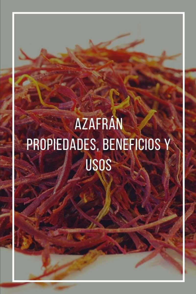 Azafrán, propiedades, beneficios y usos