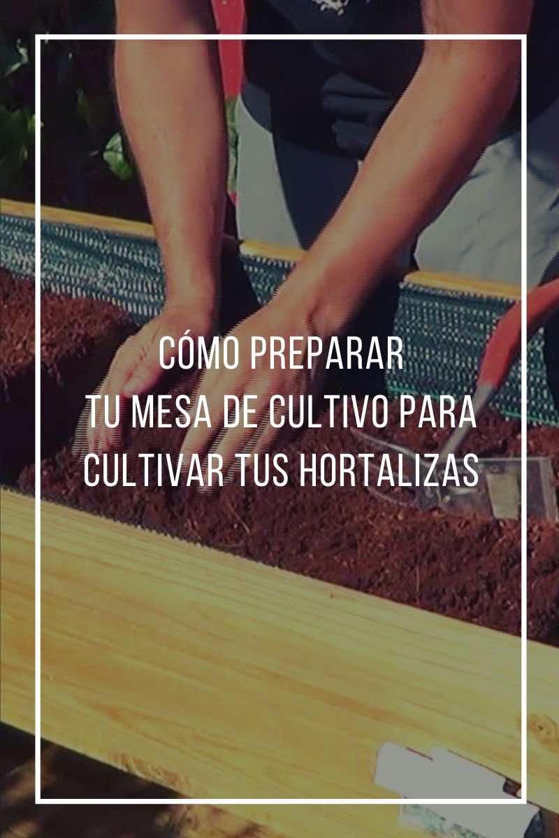 Cómo preparar tu mesa de cultivo para cultivar tus hortalizas