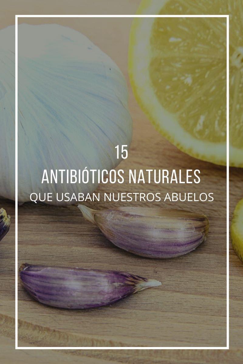 15 Antibióticos Naturales