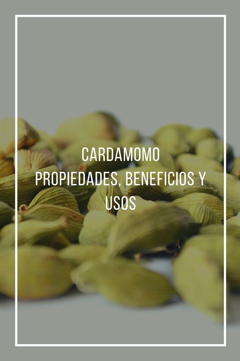 Beneficios, usos y propiedades medicinales del Cardamomo