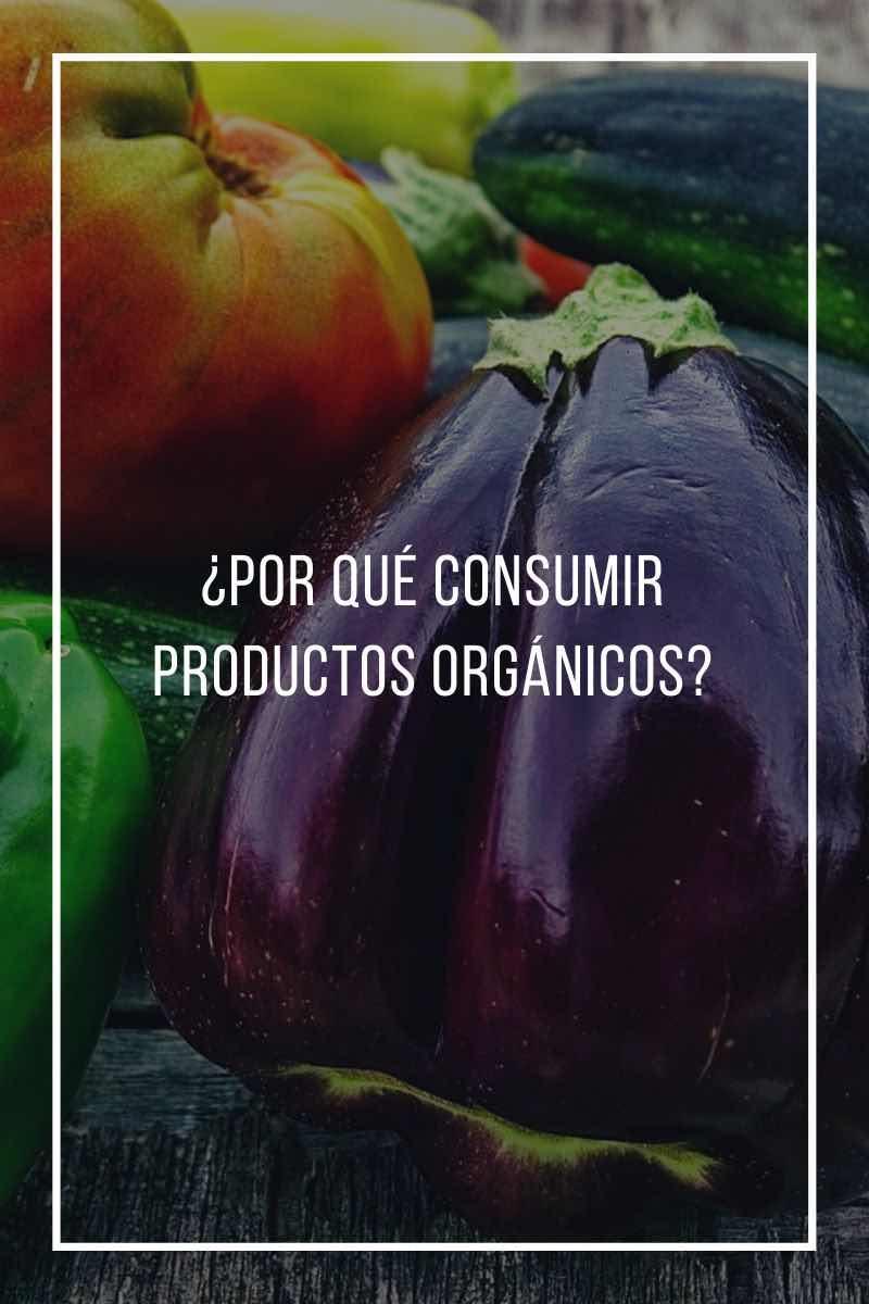 ¿Por qué consumir productos orgánicos?