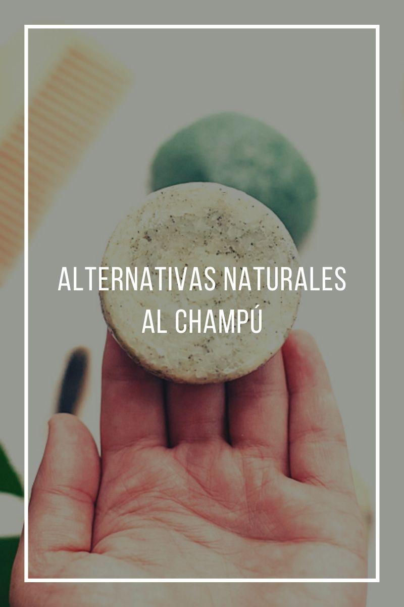 Alternativas naturales al champú