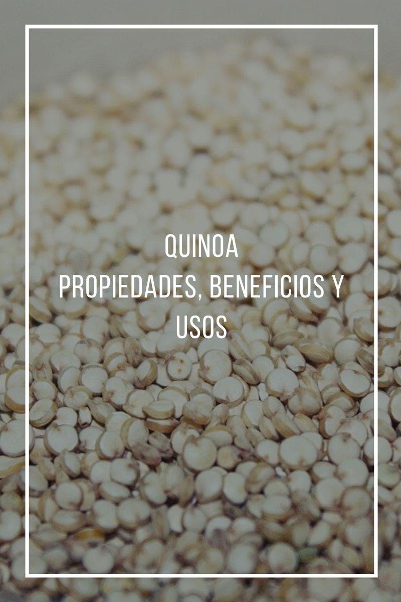Todo lo que deberías saber sobre la quinoa, propiedades y beneficios