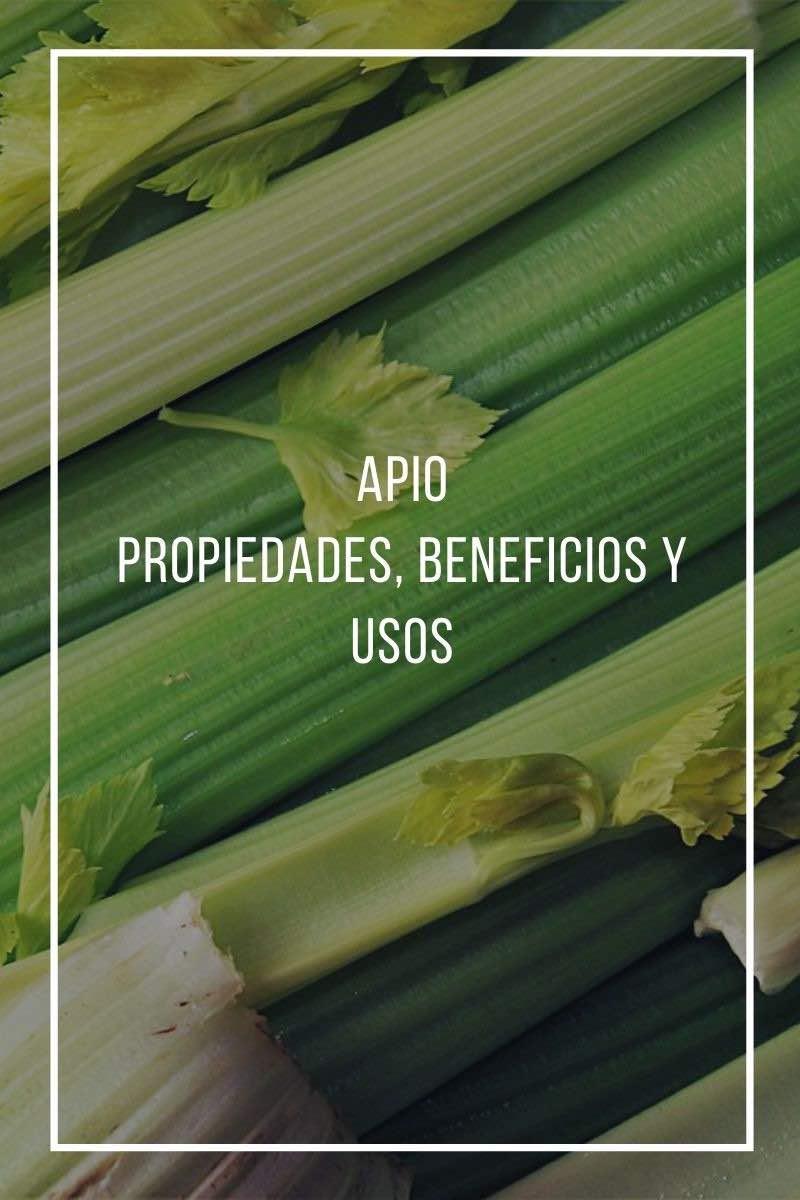 Apio: usos, propiedades y beneficios
