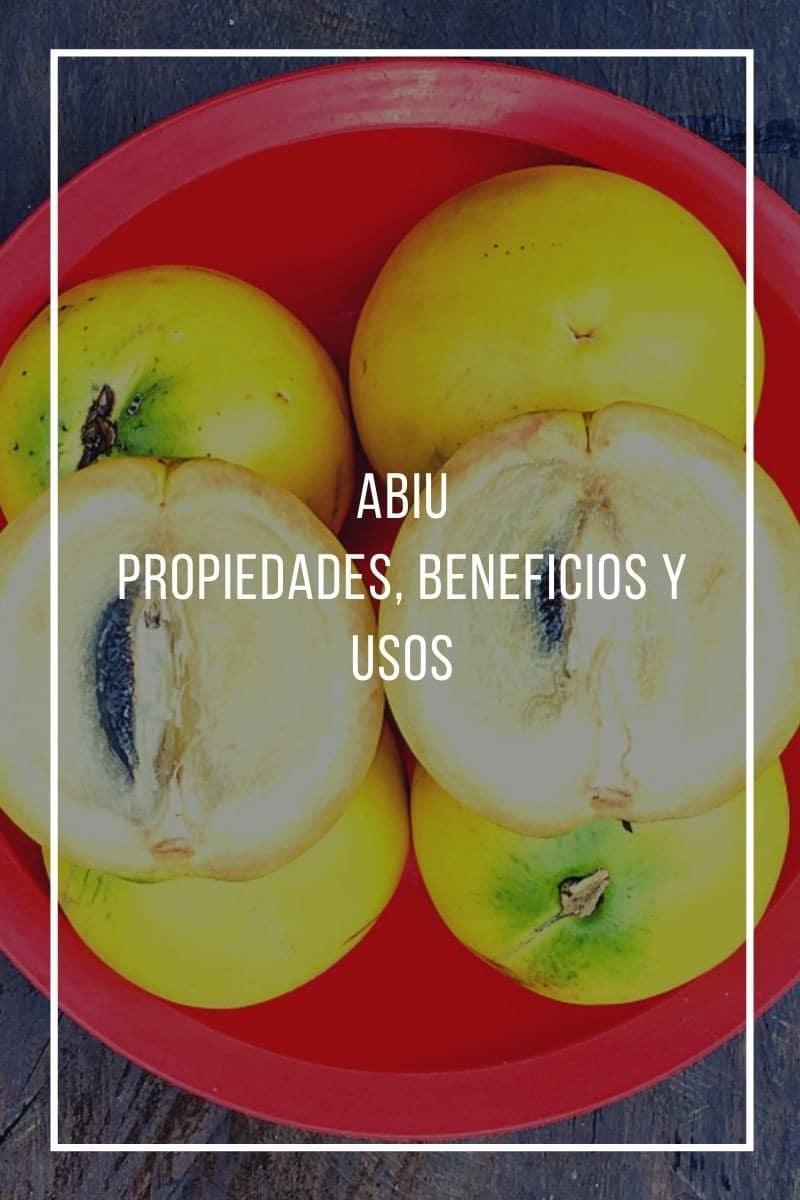Propiedades, beneficios y usos del Abiu