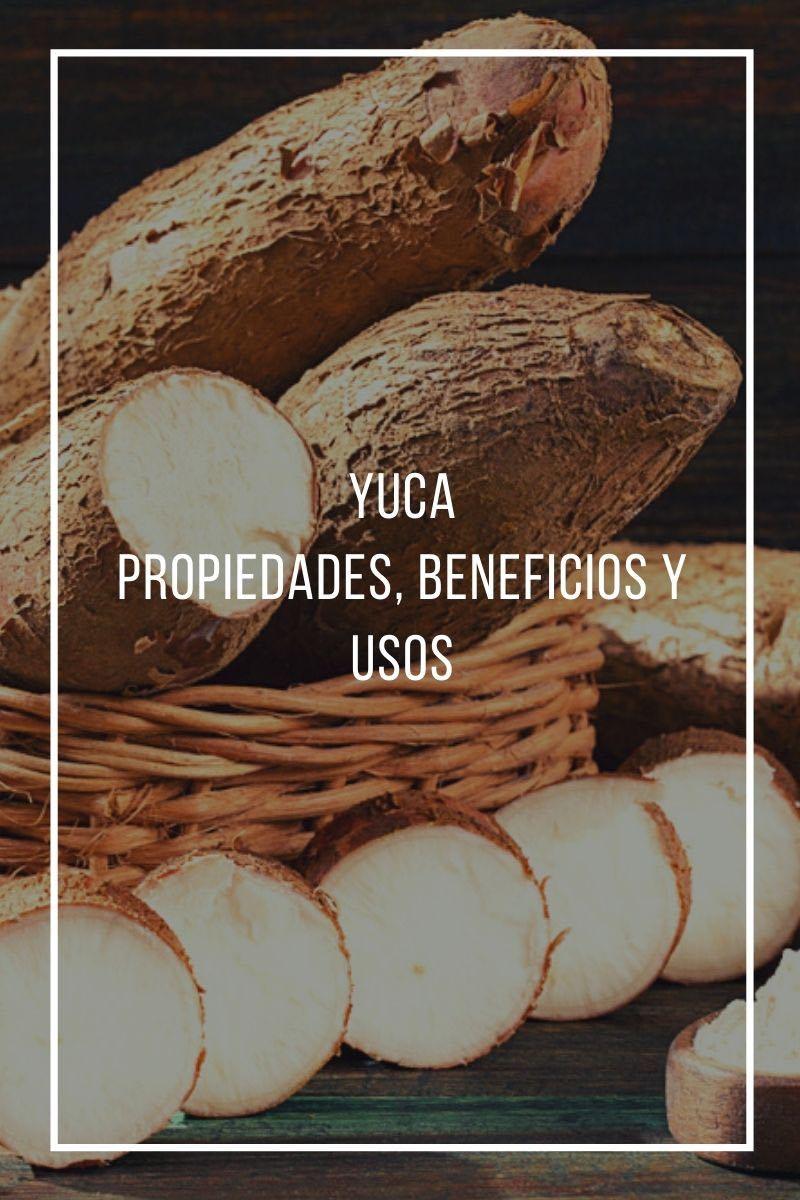 Propiedades, beneficios y uso de la Yuca