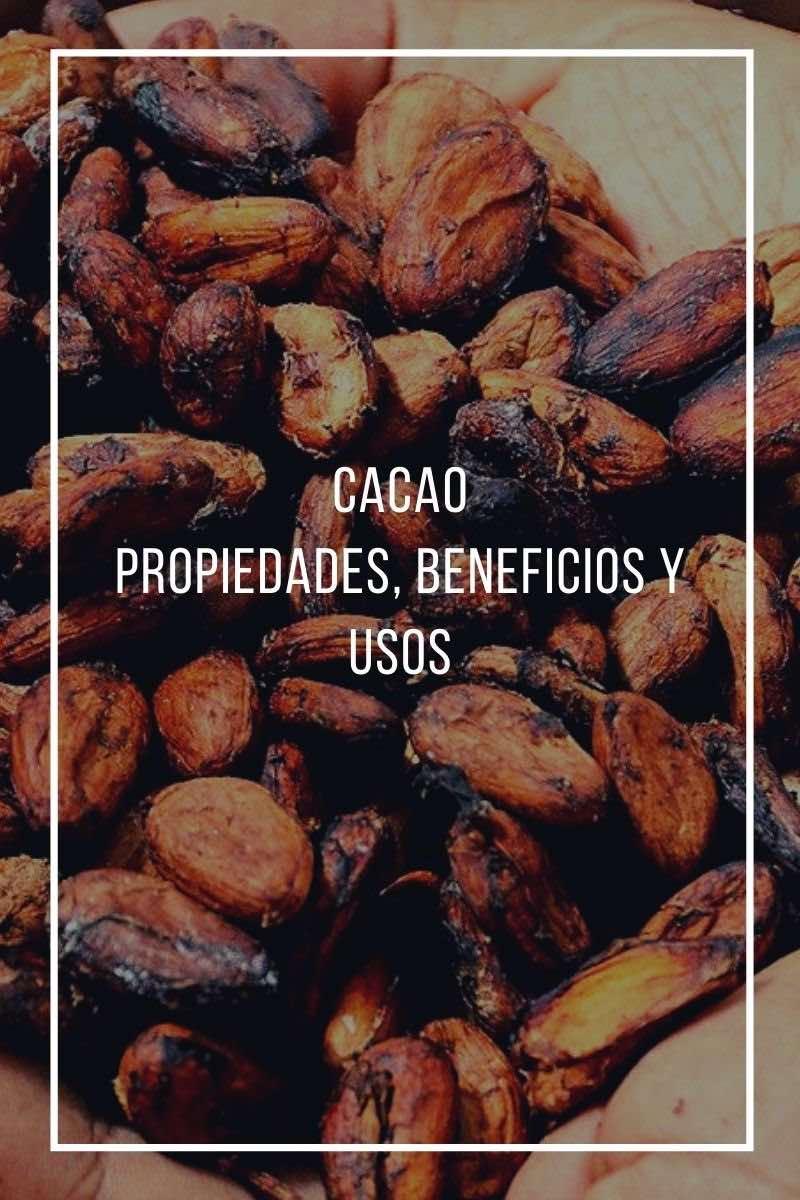 Propiedades, beneficios y usos del cacao