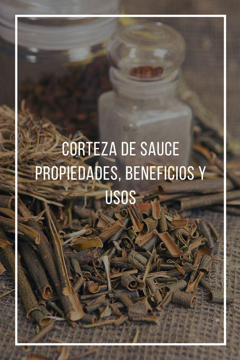 Propiedades, beneficios y usos de la corteza de sauce