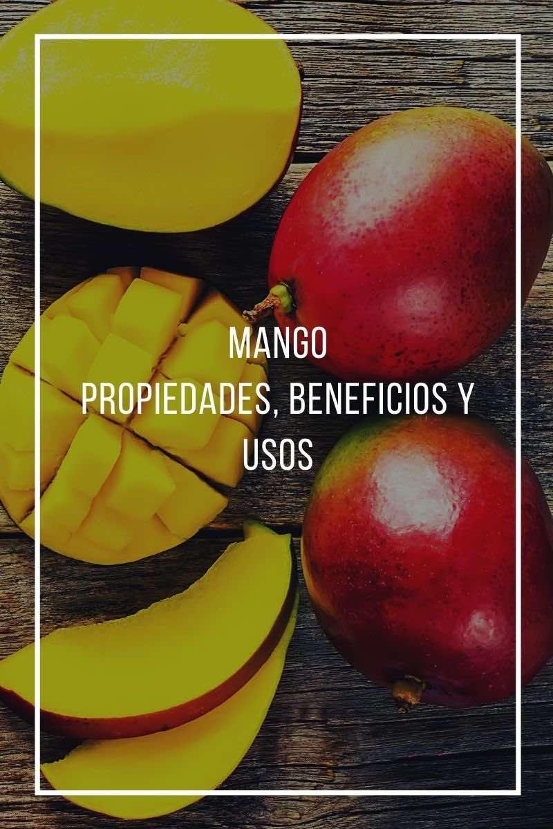 Propiedades, beneficios y uso del mango