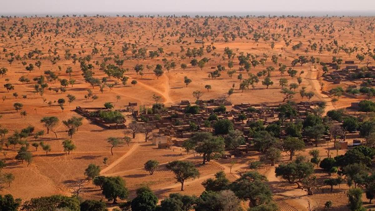 Bosque-sahara-satelite