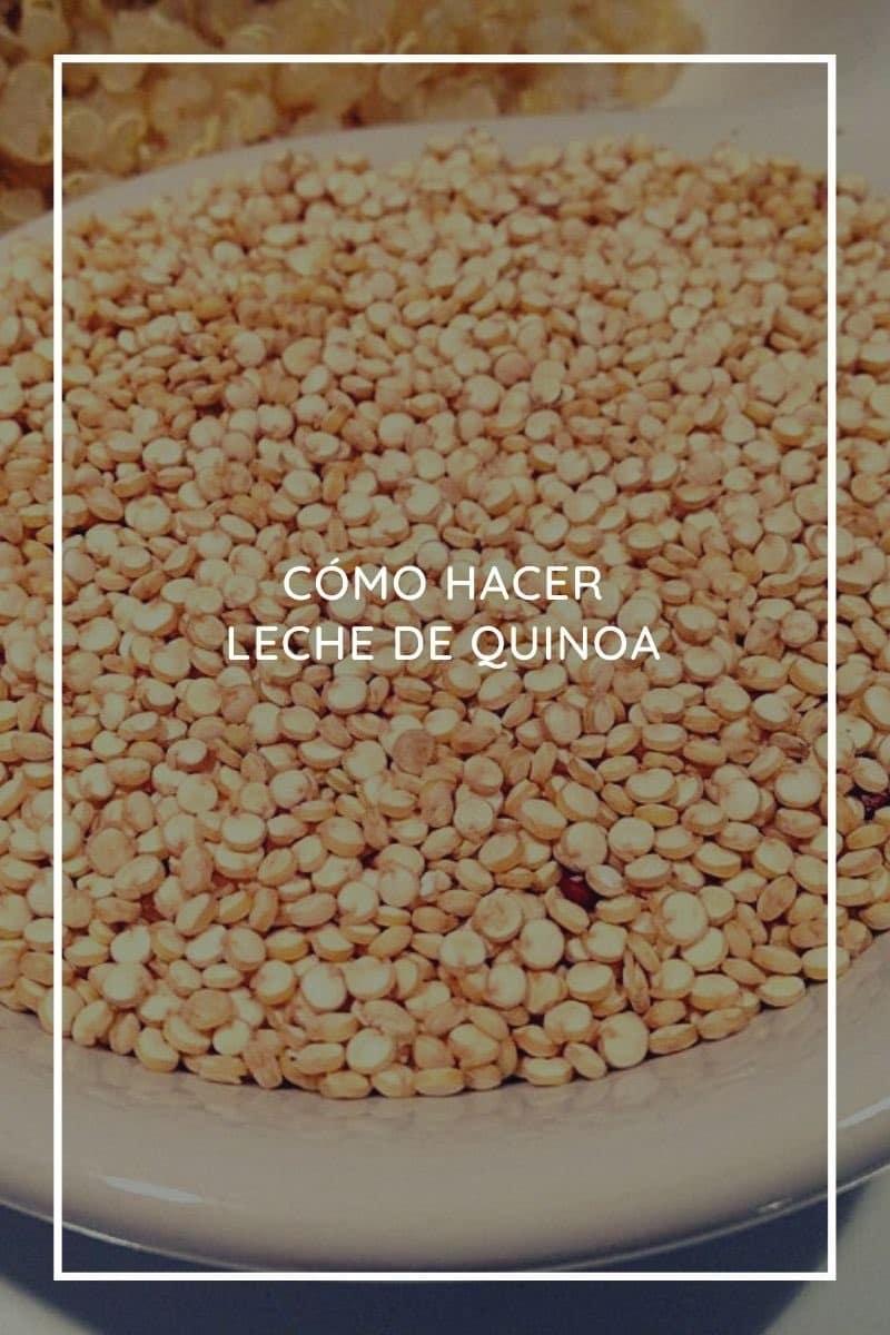 Cómo hacer leche de quinoa