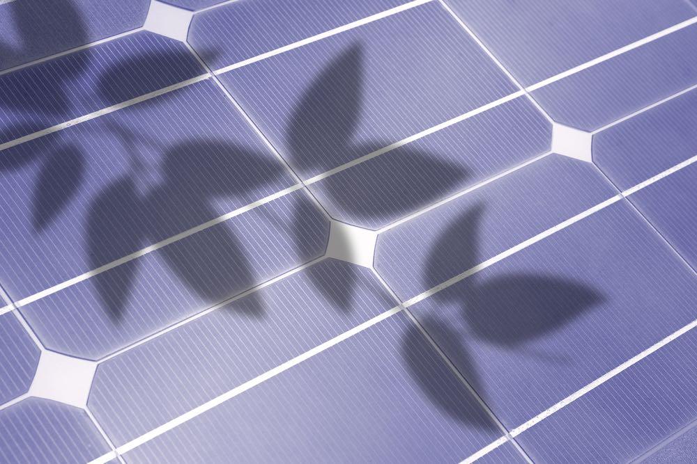 Sombras-paneles-fotovoltaicos