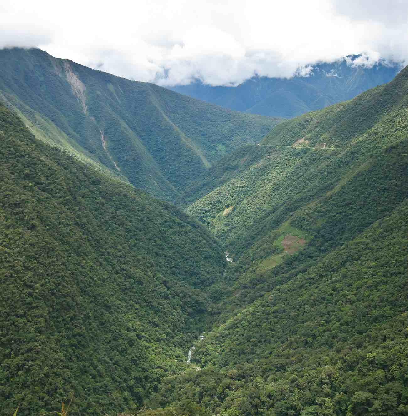 Andes-boliviano