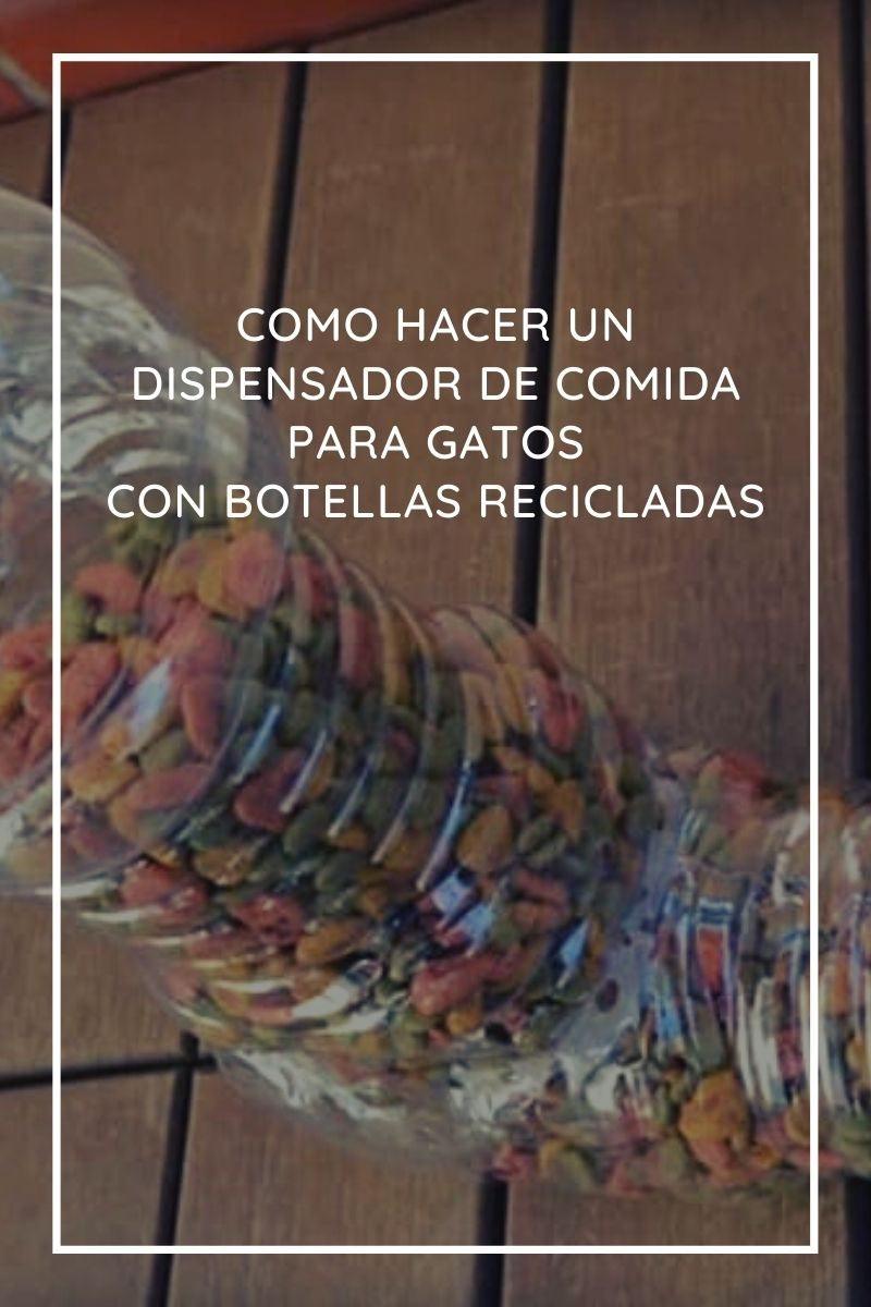 Cómo hacer un dispensador de comida para gatos con botellas recicladas