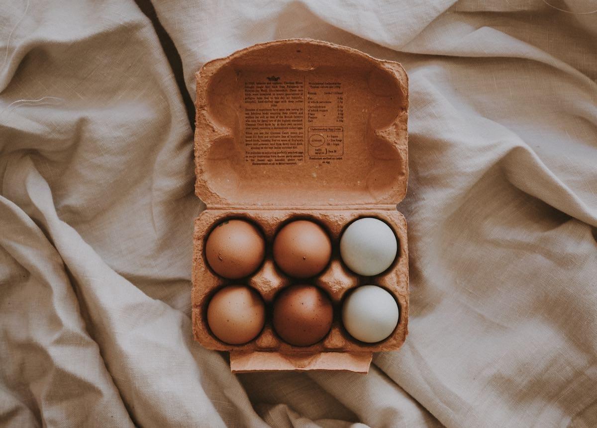 Carton-reciclado-huevos