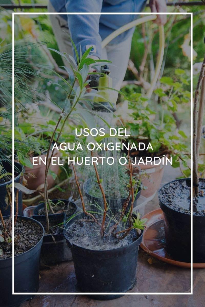 Usos del agua oxigenada en el huerto o jardín