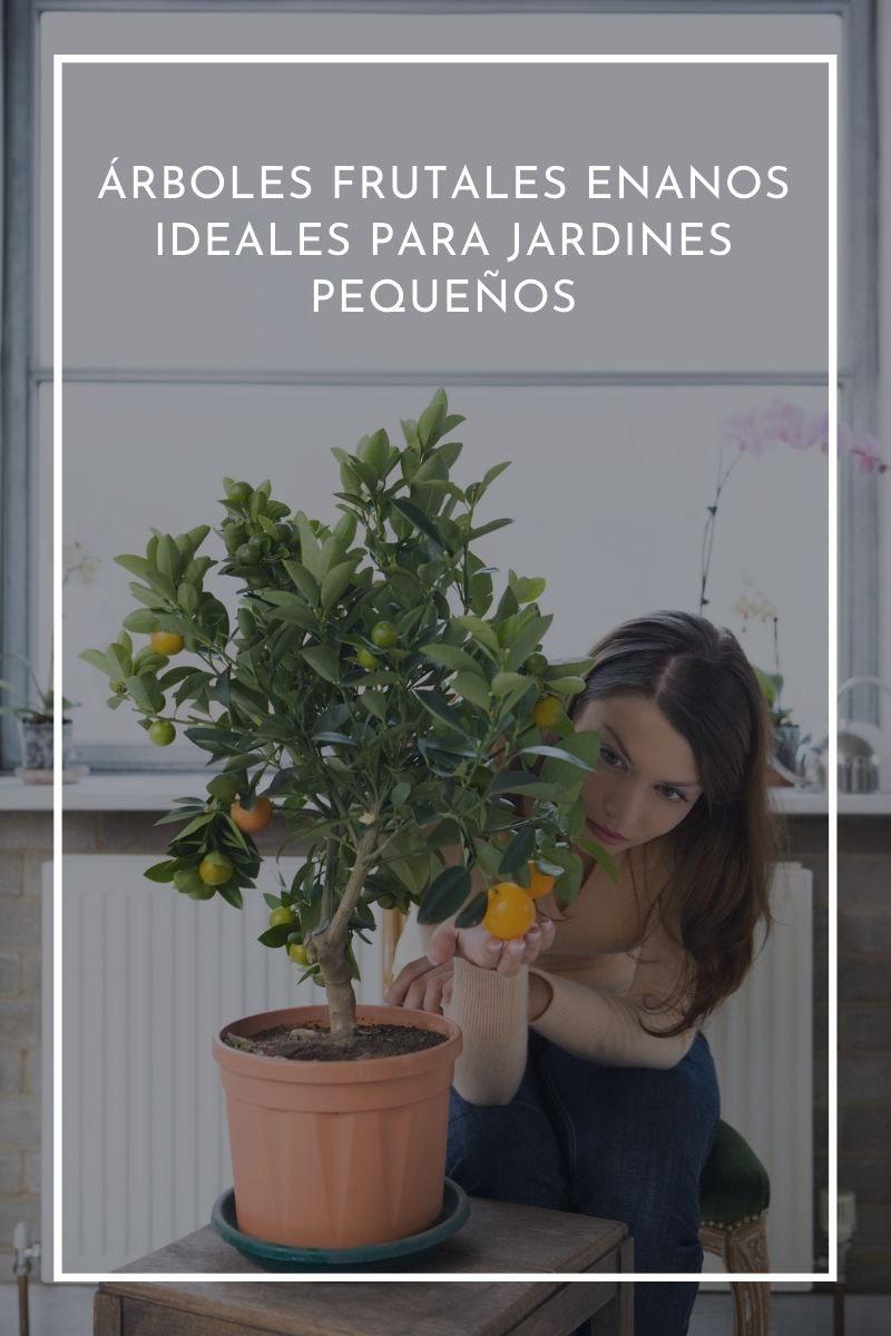 árboles frutales enanos ideales para jardines pequeños.