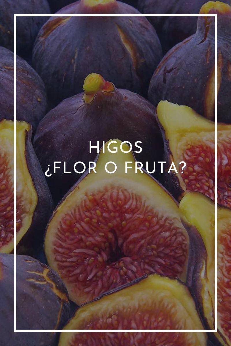 Higos, ¿flor o fruta?