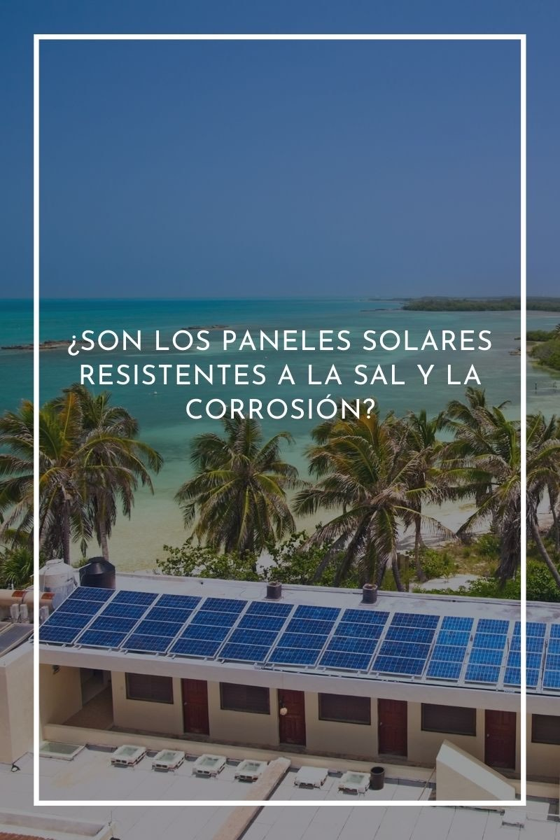 ¿Son los paneles solares resistentes a la sal y la corrosión?