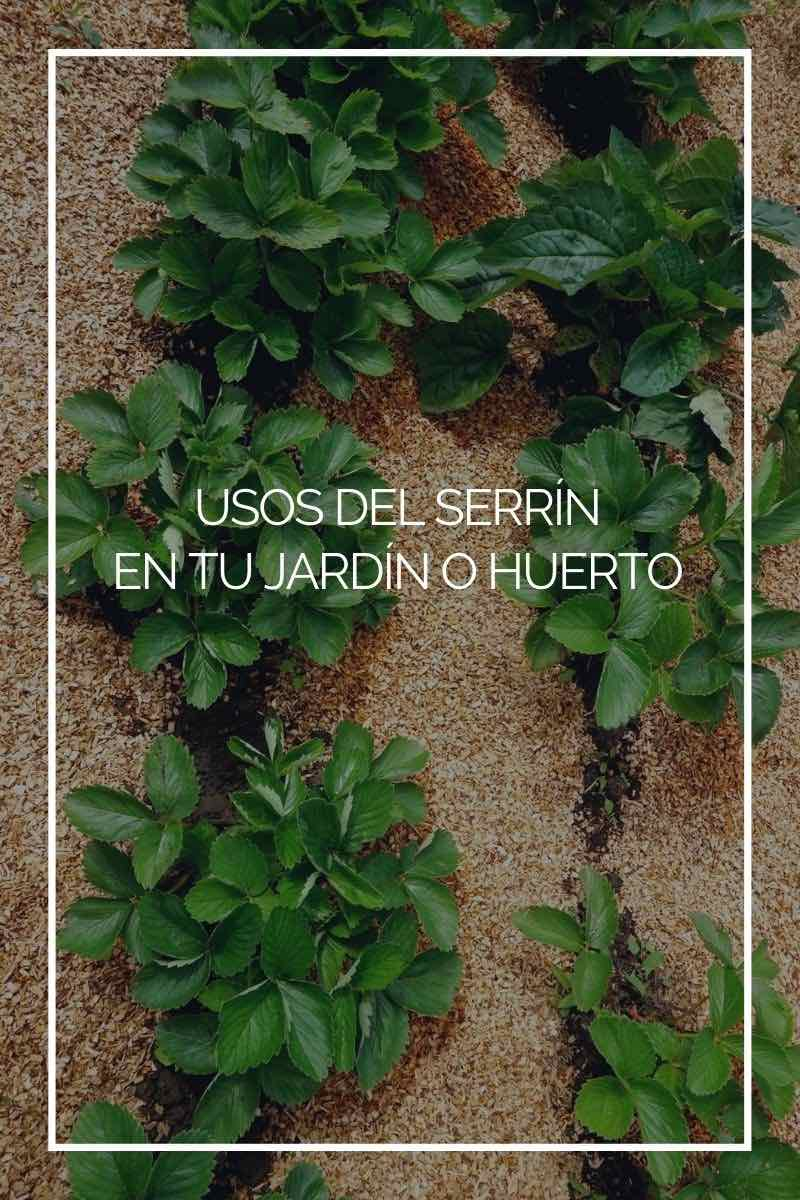 9 usos del serrín en tu jardín o huerto