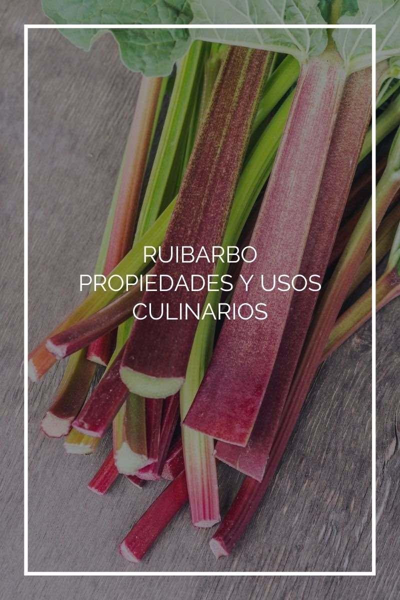 Ruibarbo: propiedades beneficiosas y usos culinarios