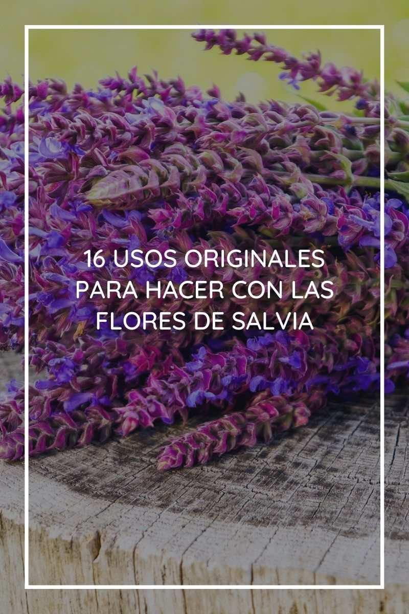 16 usos originales para hacer con las flores de salvia